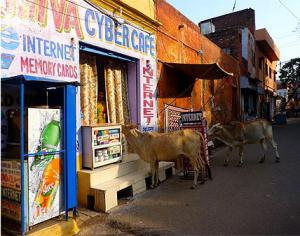 CybercaféAfricain3