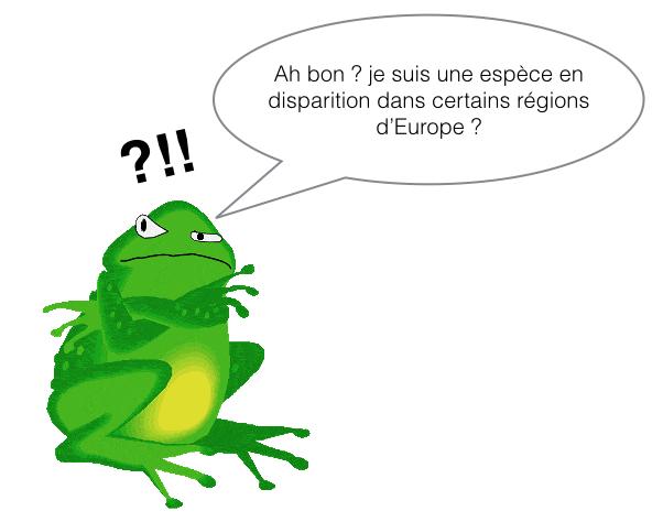 Grenouille parlante